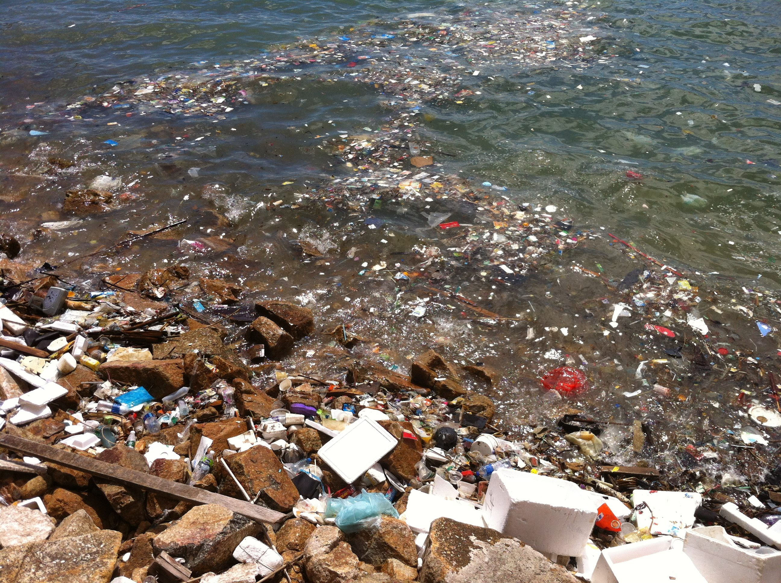 Debunking the Myths about Plastic Debris in our Ocean